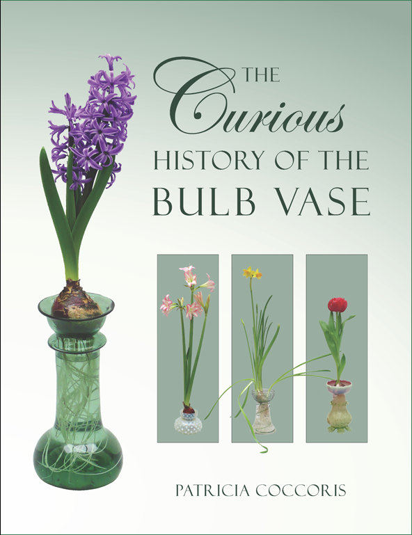 The Curious History Of Bulb Vase