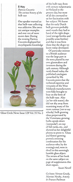 Curious History of the Bulb Vase - Glass Circle report