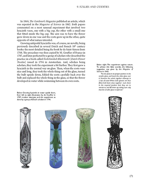 NEW BOOK The Curious History of the Bulb Vase hyacinth